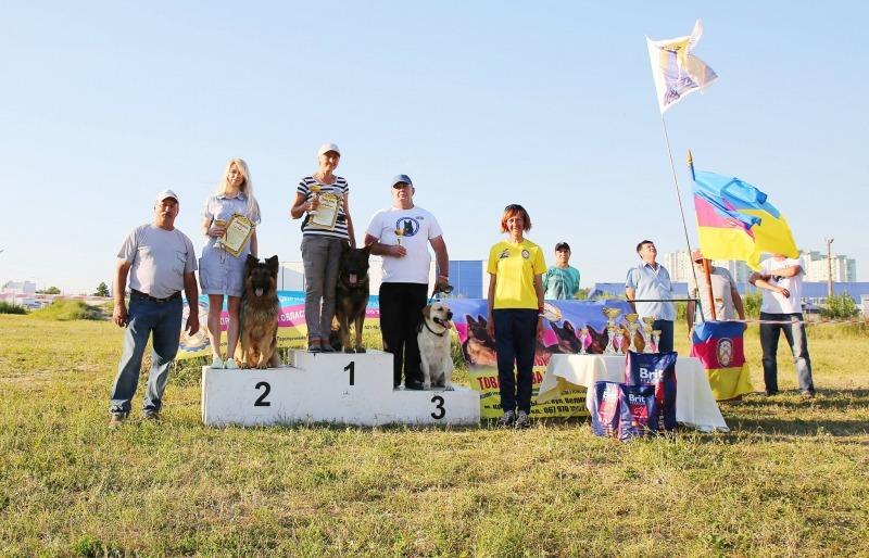 Відкритий чемпіонат ТСО України